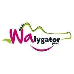 walygator_beresford